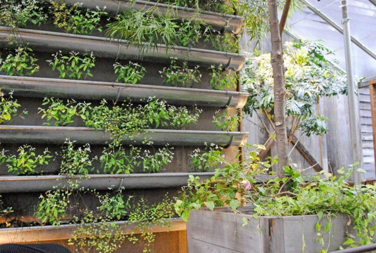 Le mur v g tal plante maison - Plante citronnelle maison ...