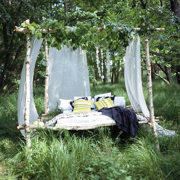 Dormir la belle toile plante maison for Plante maison